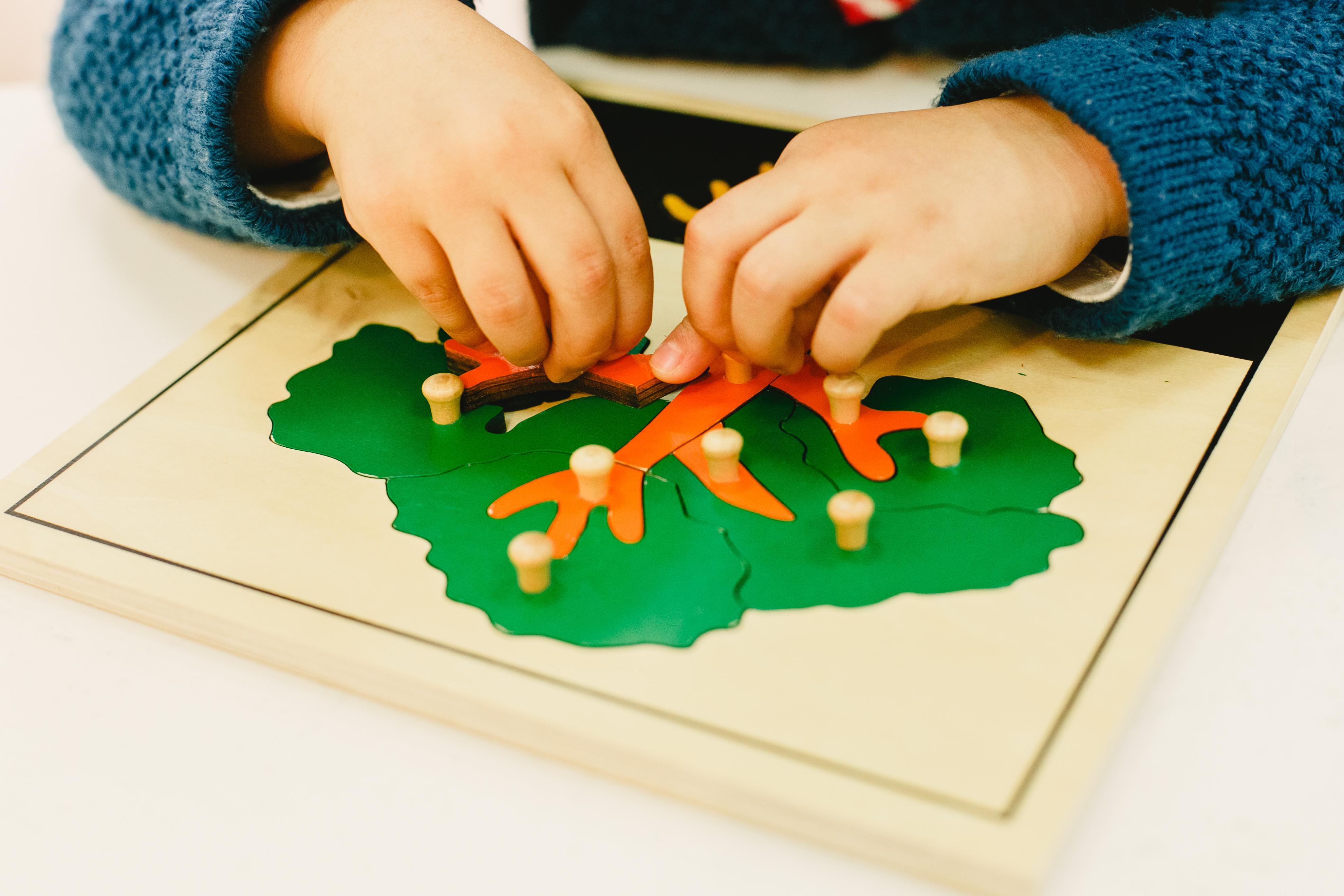 Montessori pre-primary